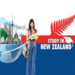 Trước khi du học New Zealand bạn cần trang bị ngay các thông tin dưới đây